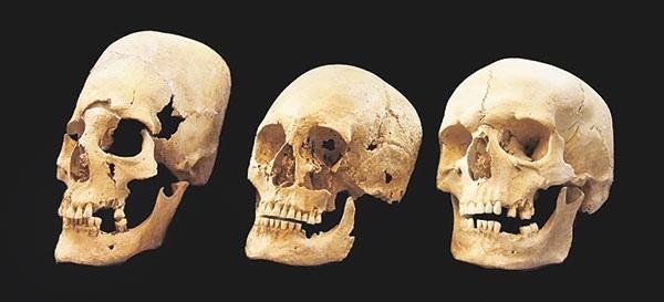 Славяне и германцы в свете антропологических данных