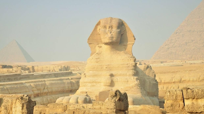 Британская семья нашла у себя в саду древнеегипетские реликвии и продала их на аукционе Общество