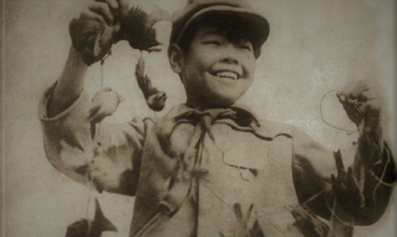 Птичий геноцид: как природа отомстила китайцам за истребление воробьев