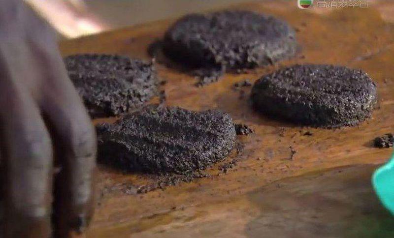 Африканский деликатес – котлеты из комаров