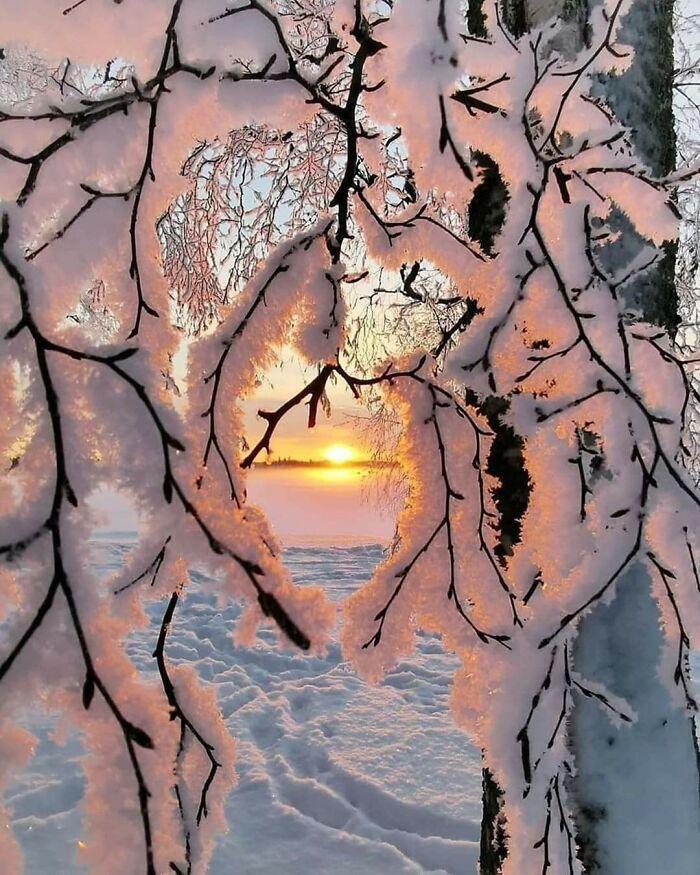 Рай перфекциониста: 10+ зимних фото, от которых невозможно оторвать взгляд Декабрь, заборСнег, усилий, создания, подобного, эффектаСнежное, покрывалоПотрясающее, сочетание, гирлянды, иснегаЗдесь, повсему, неочень, понравилась, погодкаИдеальные, снежные, плитыВетер, исолнцеИдеальная, приложил, снегопада«Друзья, былбы