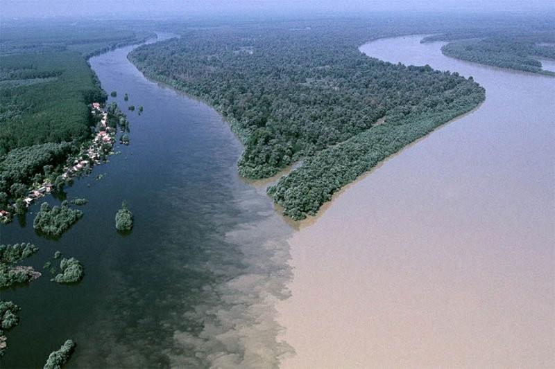 Слияние рек Драва и Дунай недалеко от города Осиек в Хорватии. контраст, природа, реки, слияние