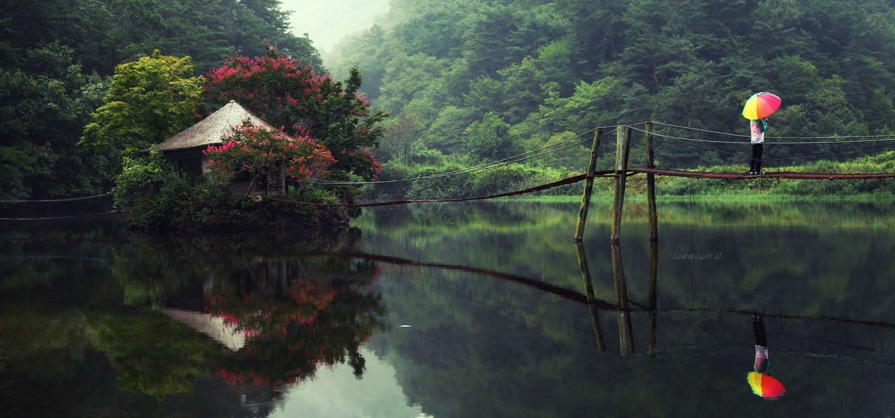 Green day by Jaewoon U on 500px