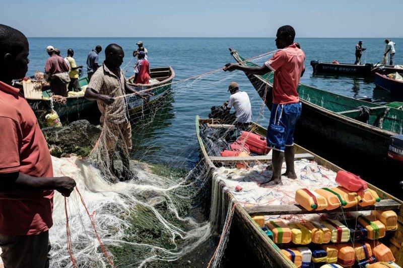 Рыбное место: как живут на крошечном острове Мигинго Мигинго, в мире, жизнь, люди, остров, рыба, рыбалка