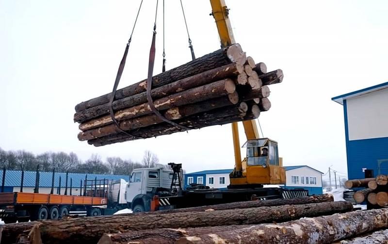 Путин начал операцию по спасению русского леса Видео