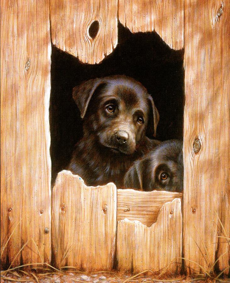 Собаки художника Daniel Kevin Hemming