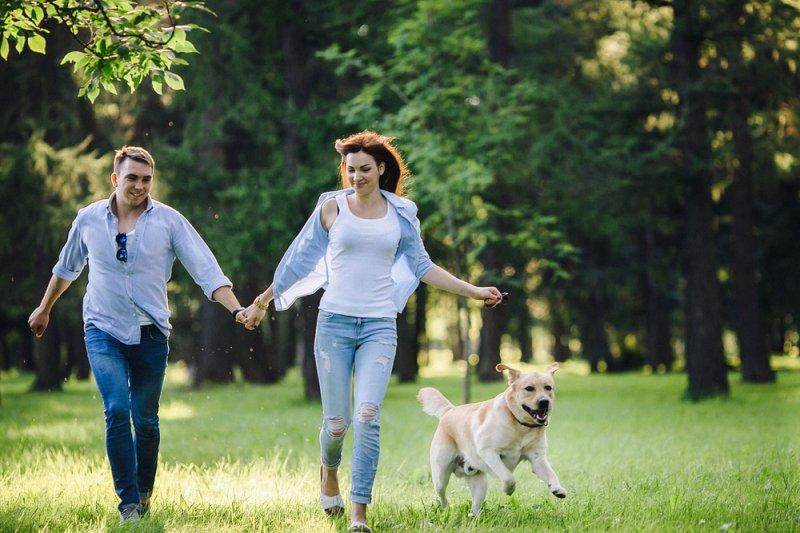 10 вещей, о которых нужно знать, если планируете встречаться с собаковладельцем Любовь, животные, ревность, собака