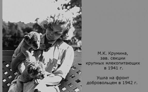 М.К. Крумина