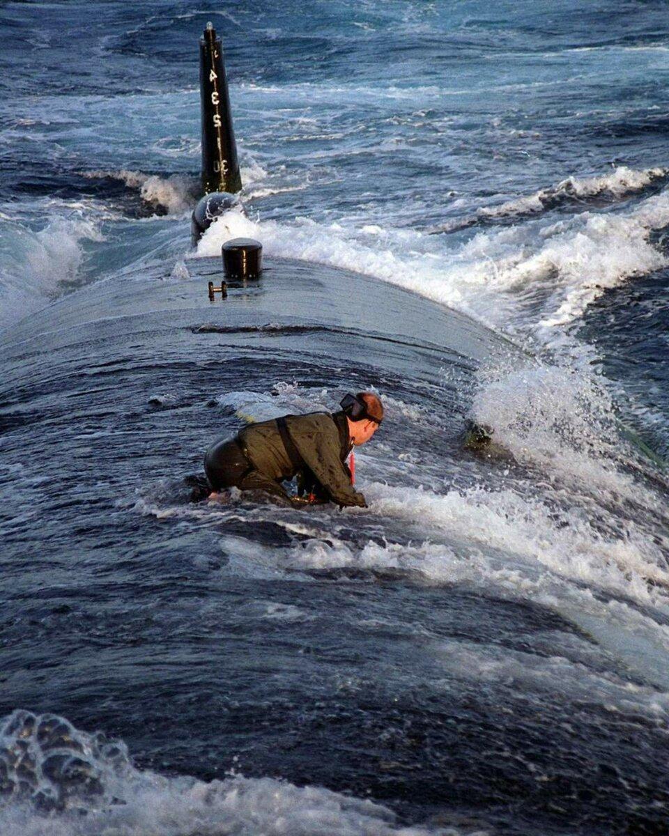 демотиватор под водой шипах, которыми