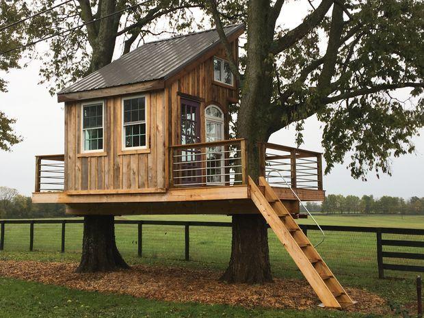 Каркасный домик на дереве с нуля