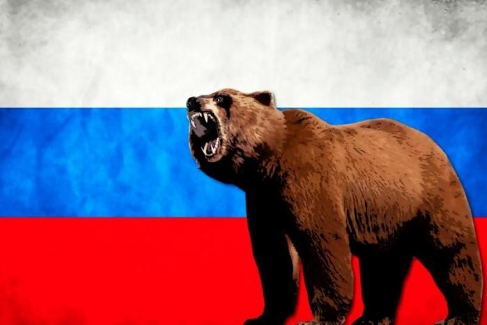 Вот почему одним из символов России является медведь
