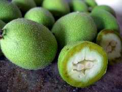 Настойка зеленого грецкого о…