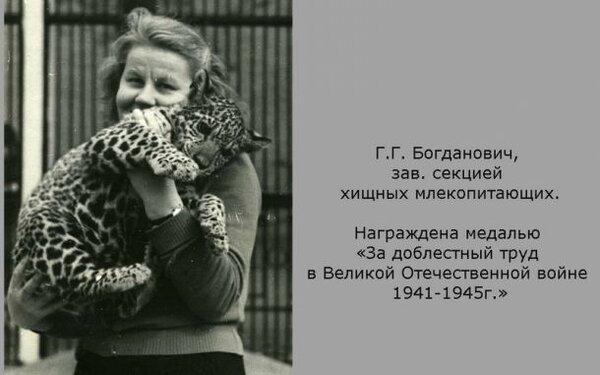 Г.Г. Богданович