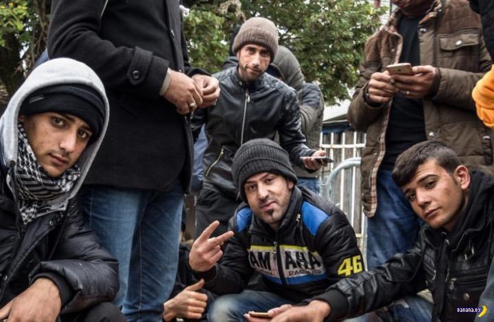 Страны Европы: беженцы и преступность