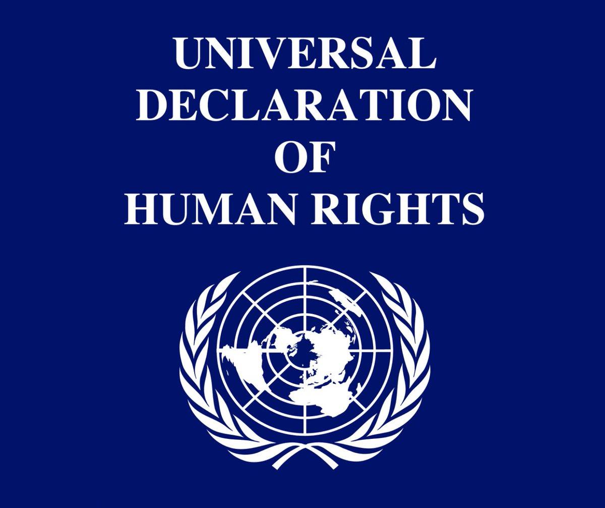 Гибридная война: Декларация прав и свобод человека геополитика