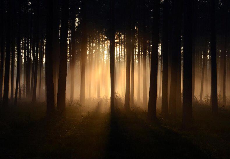 До просветления всего 48 минут тишины