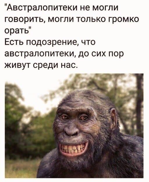 Российским историкам стала известна должность Ивана Сусанина — ведущий специалист анекдоты,веселые картинки,демотиваторы,юмор