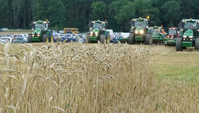 WSJ: рекордный урожай пшеницы в России угрожает американским фермерам