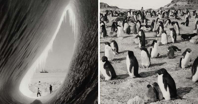 Фотографии смерти: документальный репортаж о гибельной экспедиции Роберта Скотта к Южному полюсу