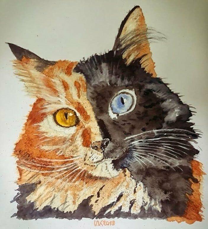 Подписчики души на чают в кисе и рисуют её во всевозможных ракурсах домашний питомец, животные, кошка, красота, окрас, смесь, химера