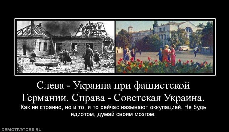 Донецк - укротайны