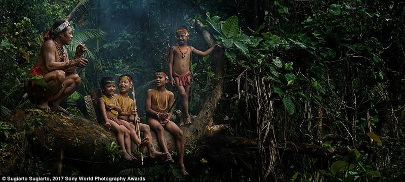 В джунглях Западной Суматры, провинция в Индонезии в мире, дети, жизнь