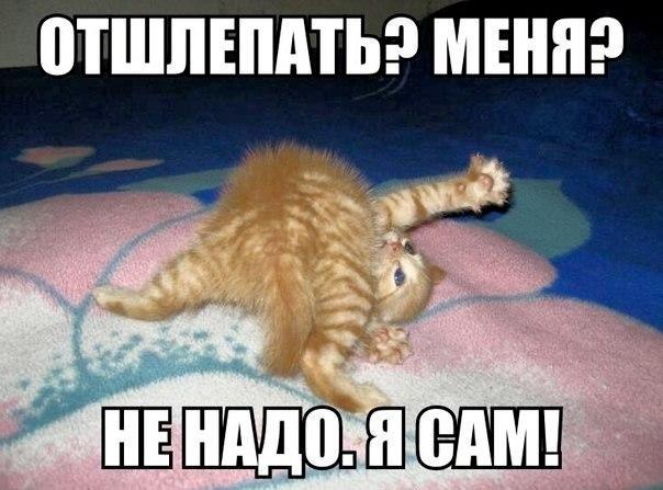 Смешная картинка отшлепай меня, про казахстан картинки