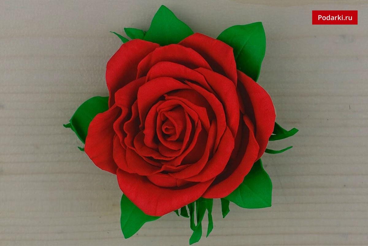 Роза изфоамирана