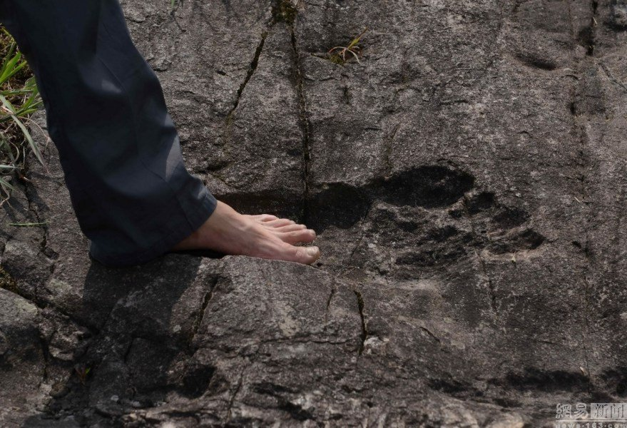 Снежный человек, ты ли это? В Китае найдены окаменелые следы гигантского гуманоида