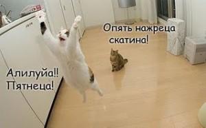 Как чудесен русский язык!