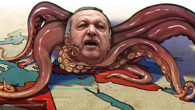 Баранец: Эрдоган скрывает сведения о потерях в Сирии, чтобы избежать неудобных вопросов