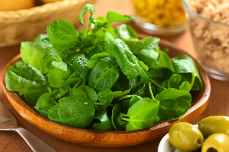 Свежий салат на подоконнике …