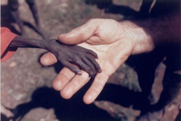 Сильные фотографии, которые никого не оставят равнодушными