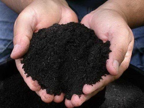 почва для зелени
