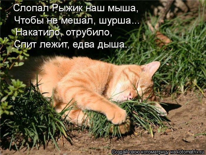 Улыбнемся?))