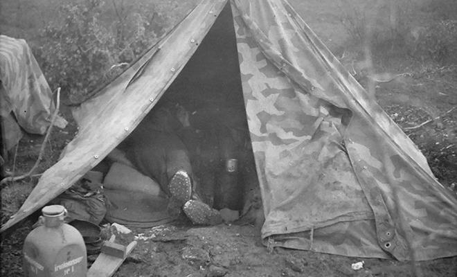 Немец купил старый фотоаппарат и нашел на нем фото оккупированного Новороссийска из 1942 года Культура
