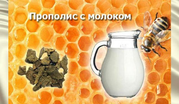Прополис с молоком против онкозаболеваний.