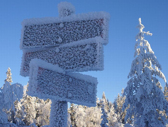 Зимушка-зима (35 фото)