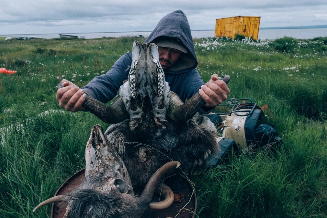 Еда нараспашку: Глаза, мозги, желудки — почему эскимосы едят это