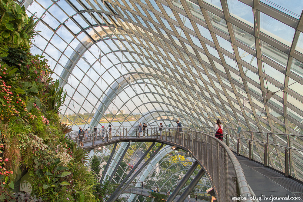 Эко-сады Сингапура