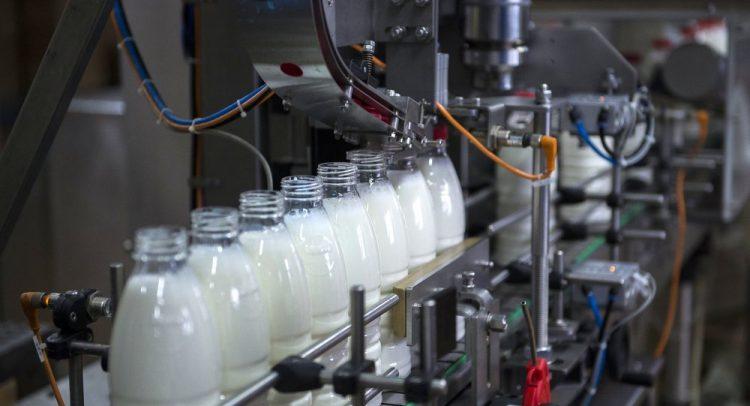 Молочный бум: российский рынок «молочки» растет более пяти лет подряд