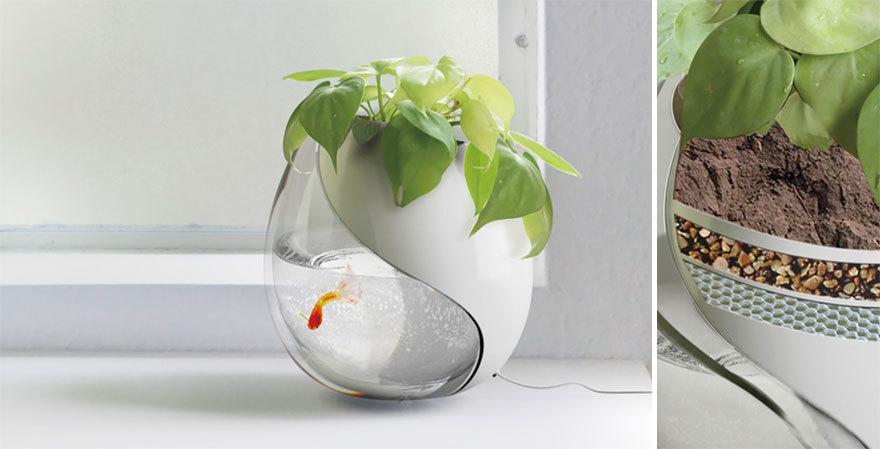 Самые оригинальные горшки и кашпо для комнатных растений