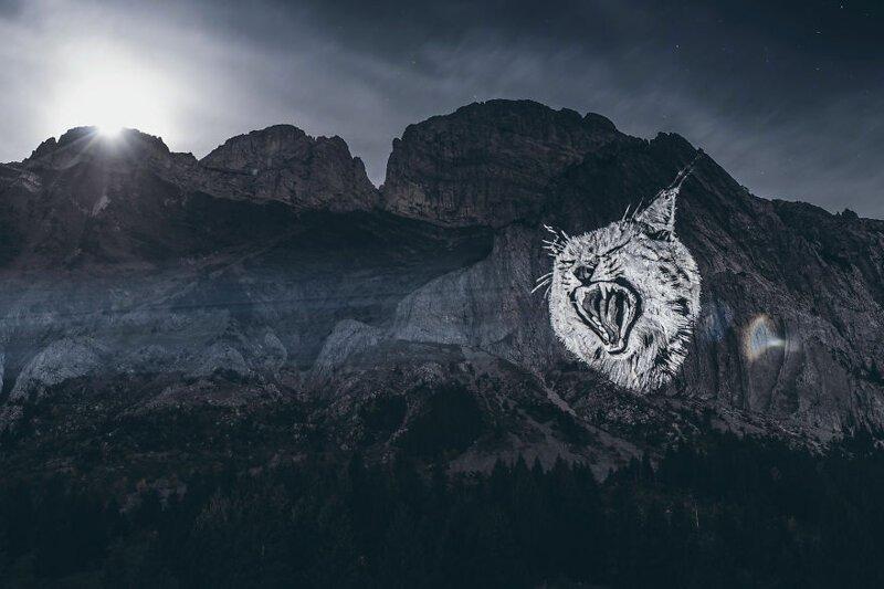 4. Рысь под луной горы, животные, исчезновение, рисунки, спасение, художник