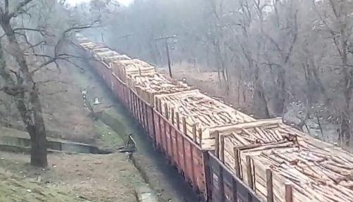 Украинцев шокировало видео эшелона, вывозящего украинский лес в Европу