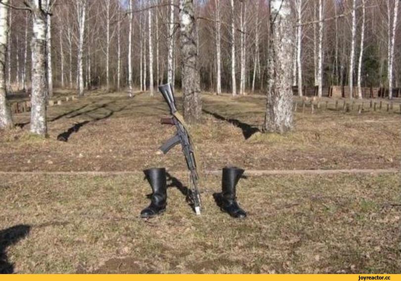 Виктор Алкнис: современная армия России.