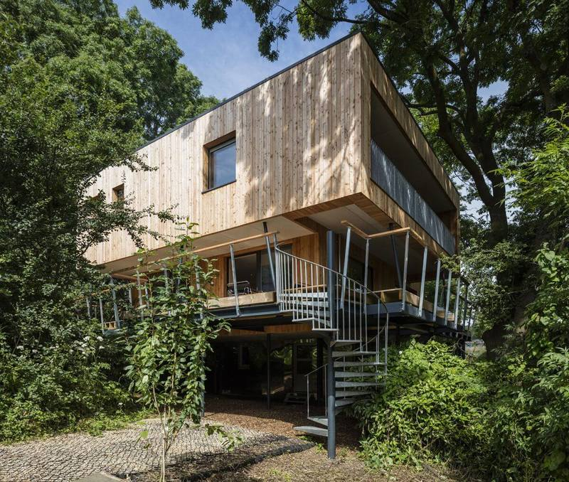 Энергоэффективный дом среди деревьев: конструктив и архитектура
