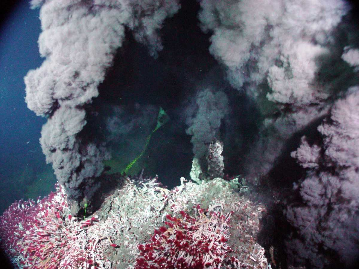 «Черные курильщики» / ©Wikipedia