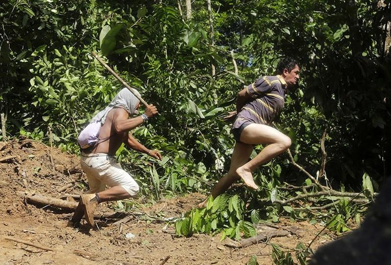 Как жители Амазонки защищают собственные леса