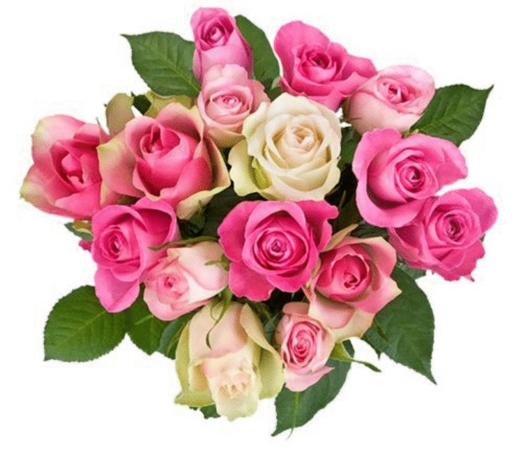 Цветов, букеты роз для фотошопа на прозрачном фоне