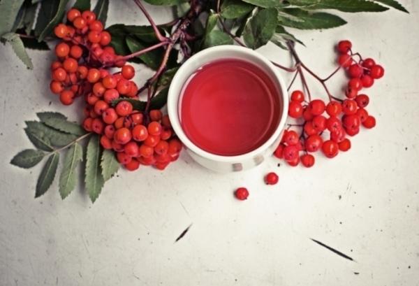 Чай с рябиной для кишечника, почек и от гриппа
